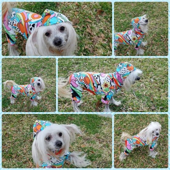 The Tailoress PDF Sewing Patterns - Bella Pyjamas for Dogs PDF Sewing Pattern