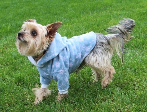 The Tailoress PDF Sewing Patterns - BUNDLE - Timmy Gilet Fido Jumper Jasper Jacket for Dogs PDF Sewing Pattern