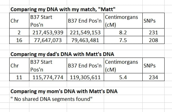 This image gives an example of a DNA match where multiple segments are false (IBS) and no segments are real (IBD)