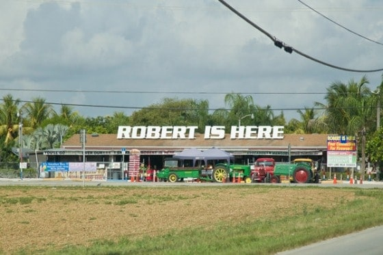 robert-is-here