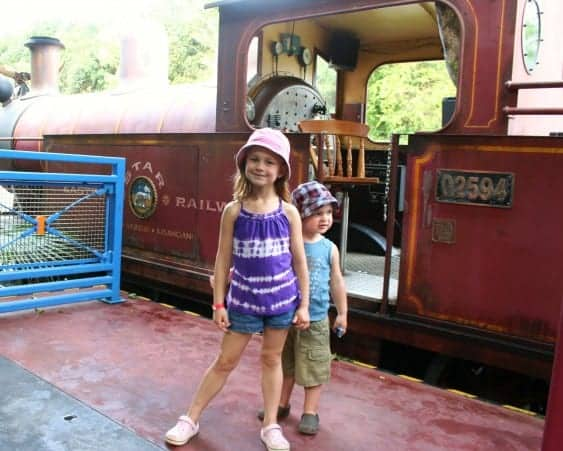 animal kingdom, disney's animal kingdom, wildlife express train, animal kingdom with babies, animal kingdom with toddlers, animal kingdom with preschoolers