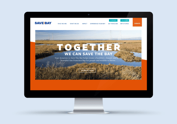 Save The Bay On Desktop Screen -Digital Creative - Citizen Best