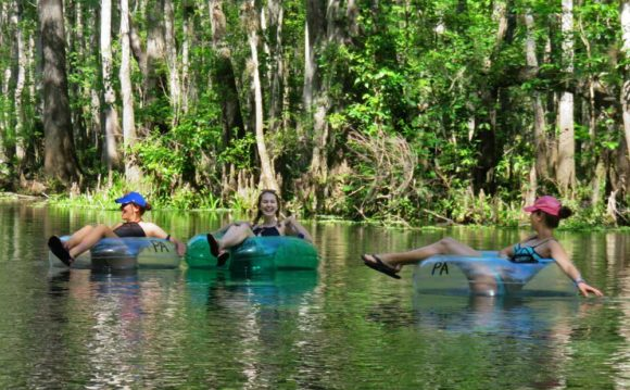 The Ichetucknee Springs State Park: Many say it offers the best tubing in Florida.