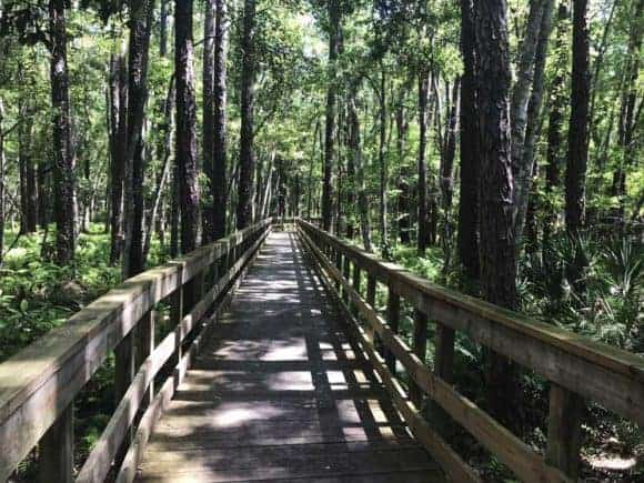 This long boardwalk gets you from the washroom/rest stop to Camp Milton along the Jacksonville-Baldwin Bike Trail. On this side tour, you can learn about Florida's role in the Civil War .(Photo: Bonnie Gross)