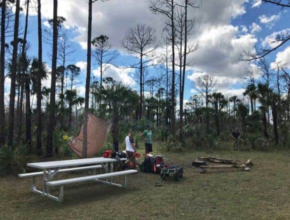 You can backpack into the back country along this Everglades hiking trail and find a primitive campsite. (Photo: Bonnie Gross)