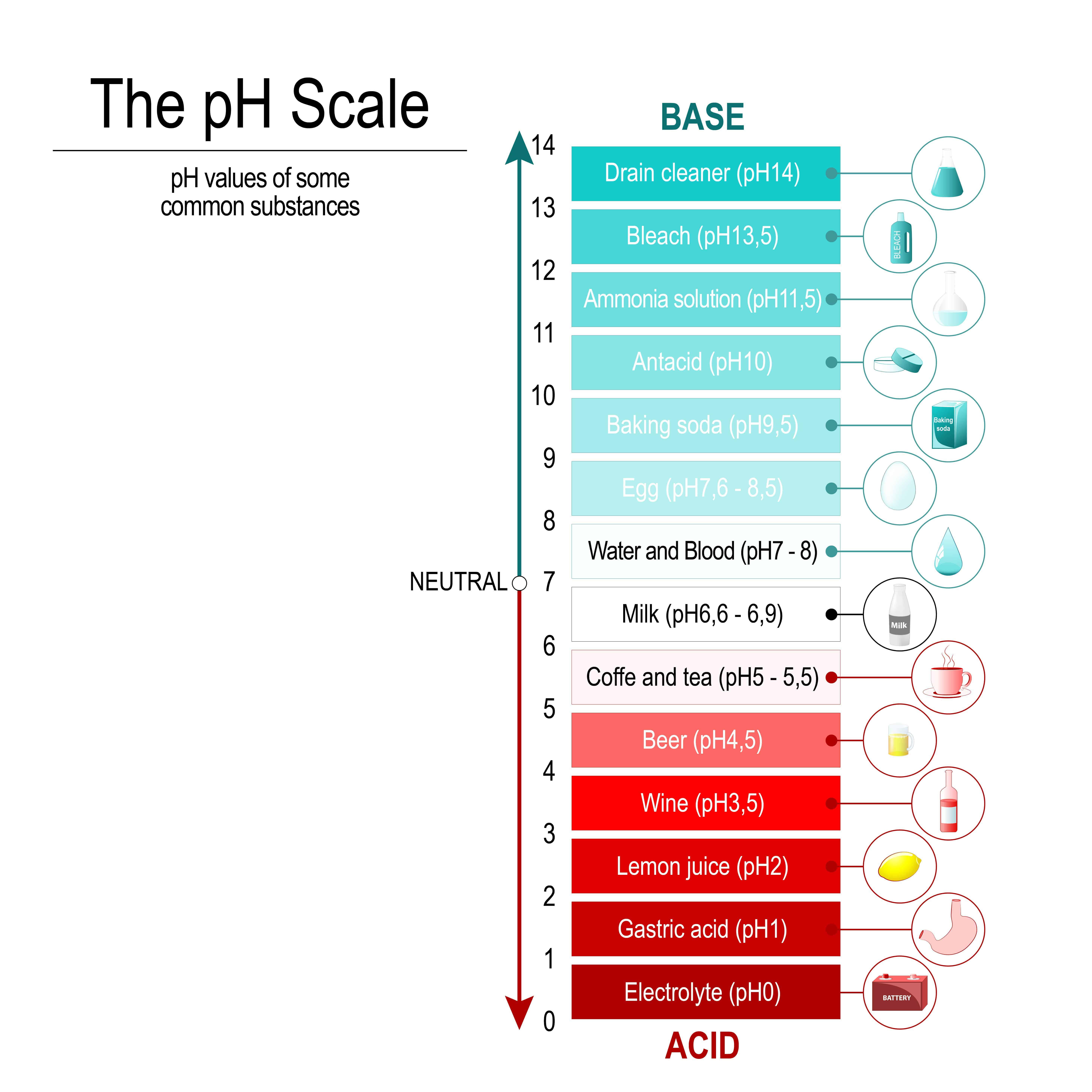 https://www.shutterstock.com/image-vector/ph-scale-values-some-substances-vector-1081704128