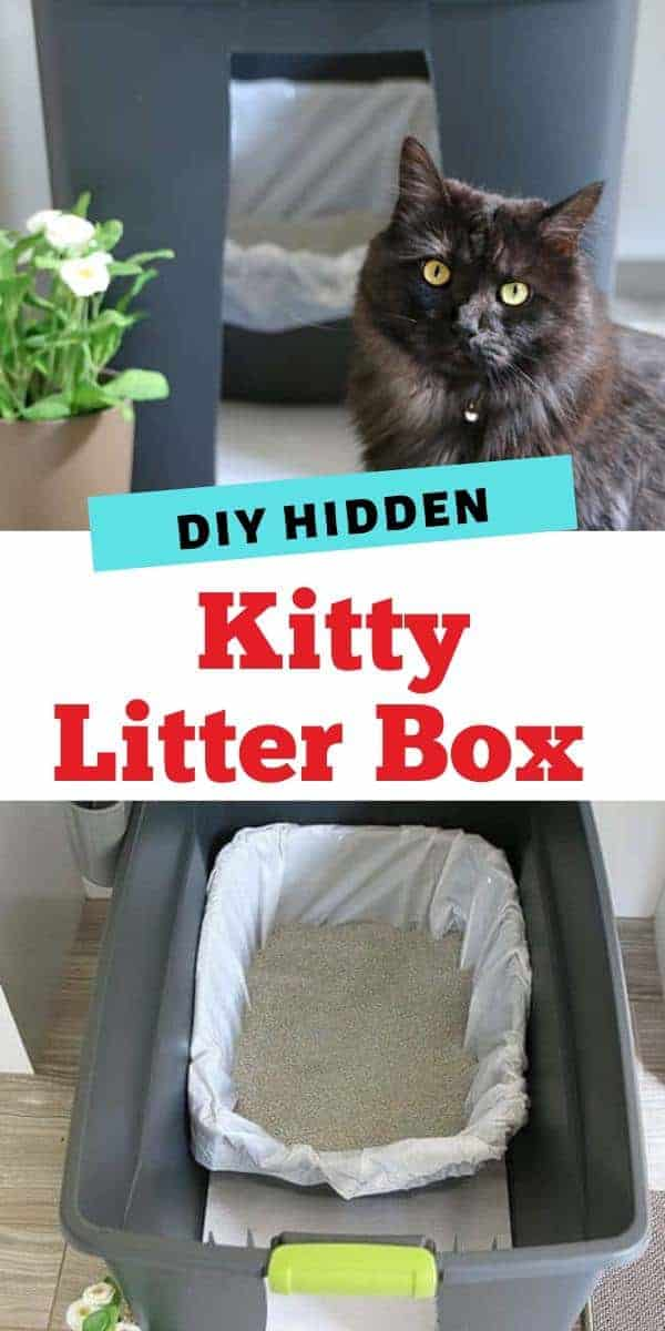 Hidden Kitty Litter Box Ideas DIY Home Decor Ideas - Easy Craft for Cats by Living Locurto