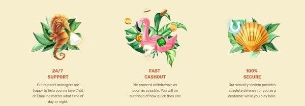 Paradise Casino deposit, cashout, support