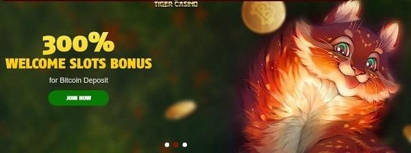 888 tiger no deposit