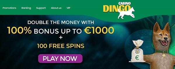 100% up to $1000 welcome bonus