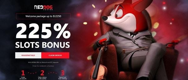 Red Dog Casino 225% welcome bonus