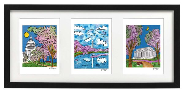 Framed set of three DC ~ Capitol Spring, Monumental Blossoms, Lincoln Spring 1