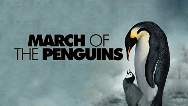 March of the penguins is a nature documentary about penguins and their babies.