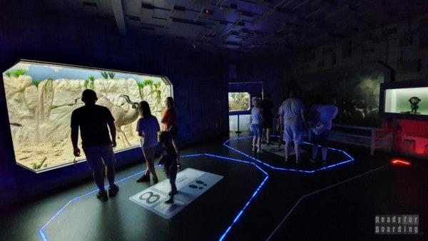 Park Nauki i Ewolucji Człowieka
