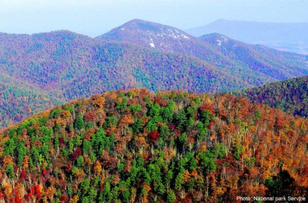 Shenandoah valley fall foliage