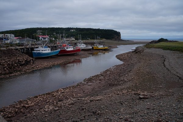 eastern canada road trip, maritimes with baby, bay of fundy with baby, hopewell rocks with baby