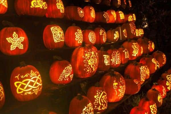 Is wall of pumpkins with elaborate celtic scroll work are just some of many cool pumpkin artistry at the jack o'lanter blazes outside of nyc.