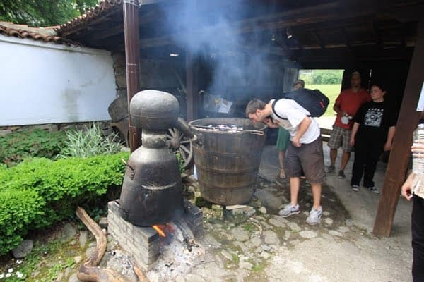 Ecotourism and Eco-gastronomy in Bulgaria (includes Rose Festival)