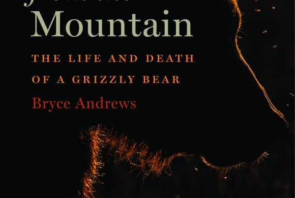 Bryce Andrews - life and death of a grizzly bear