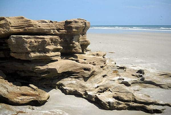 Coquina rocks at Washington Oaks State Park, Palm Coast