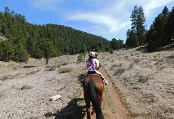 horseback riding in the state forest outside of Flagstaff