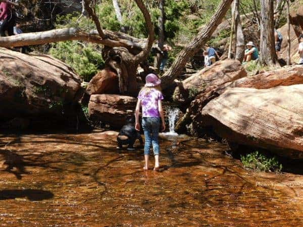 the middle emerald pool in Zion Park is fun for kids big and small