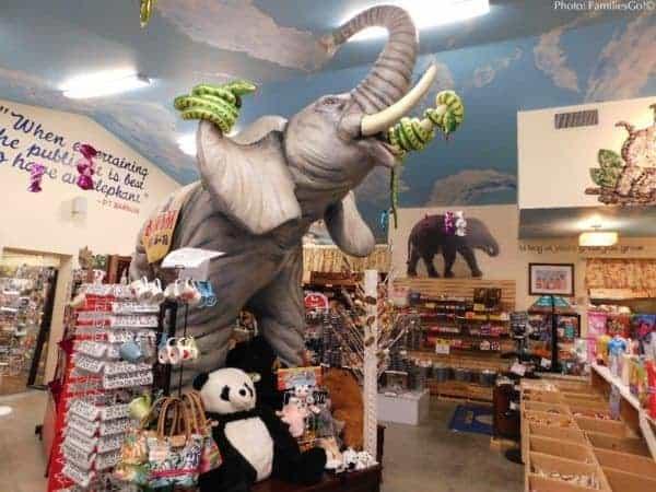 Elephants at mr. Ed's