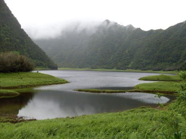 The hidden lake in a green valley in grand etang national park, grenada
