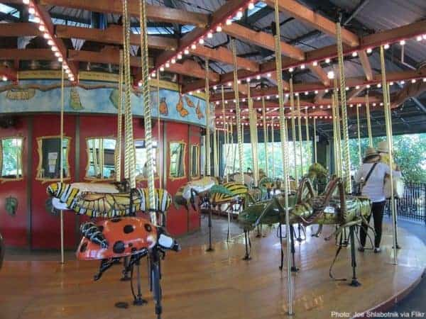 This bronx zoo carousel lets you ride on enormous colorfful bugs including a ladybug and caterpiller