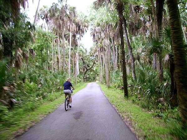Biking through Highland Hammocks State Park along the Florida Cracker Trail. (Photo: David Blasco)