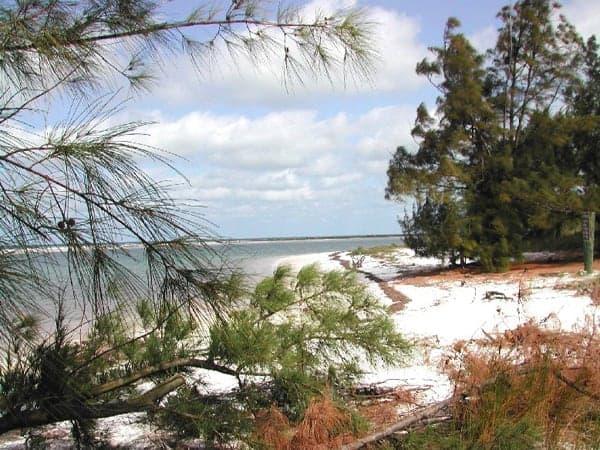 anclote key preserve state park beach on bayou