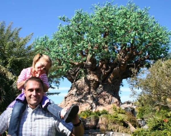 animal kingdom, tree of life, walt disney world, animal kingdom with babies, animal kingdom with toddlers, animal kingdom with preschoolers