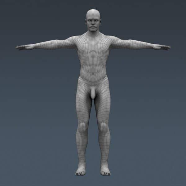 BodyMuscSkel th043