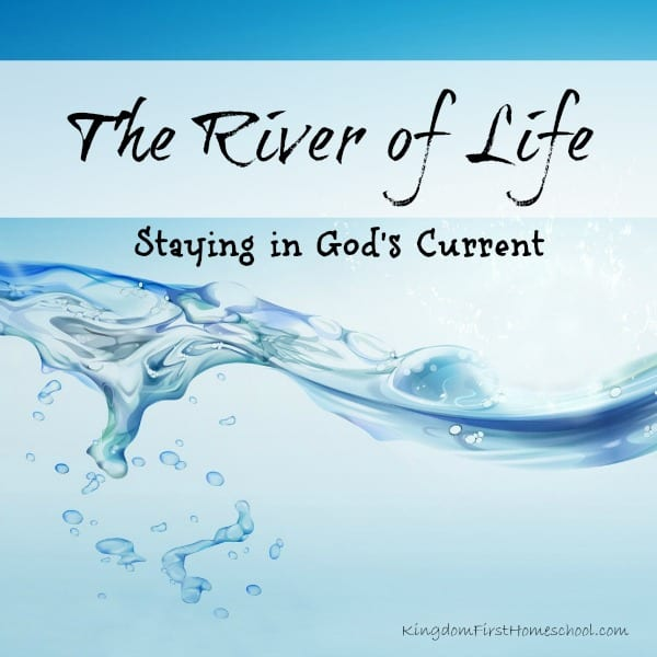 The River of Life-Staying in God's Flow