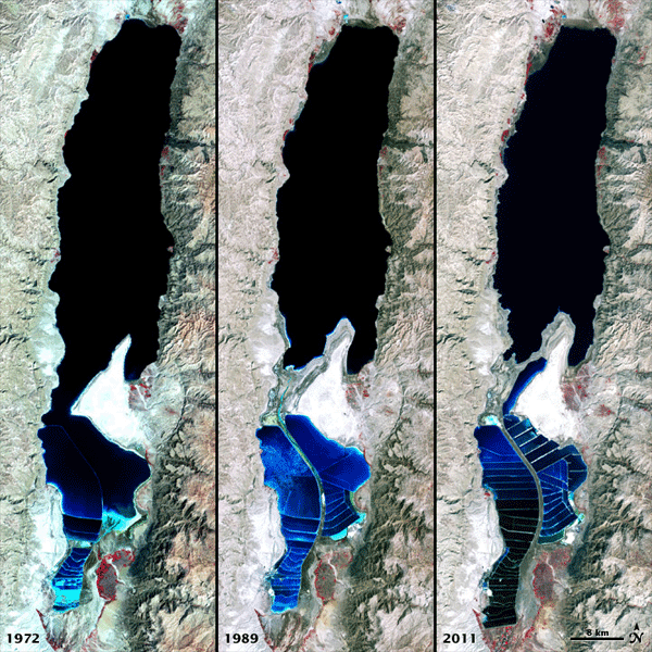 The false-color images above of the Dead Sea were captured by the Landsat 1, 4, and 7 satellites. The Multispectral Scanner System on Landsat 1 acquired the top image on September 15, 1972. The middle image was acquired on August 27, 1989, by the Thematic Mapper on Landsat 4. The third image is from the Enhanced Thematic Mapper Plus on Landsat 7 on October 11, 2011. On a hot dry summer day, the 1,035-square-kilometer (405-square-mile) surface of the Dead Sea can drop as much as two to three centimeters (one inch) from evaporation, making the remaining water increasingly salty. In the past, the Dead Sea has been deep at the northern end and shallow at the south. Diversion of the water flowing in to the sea for agriculture in modern times has caused the Sea to separate into two separate lobes. The southern part is mostly dry except for ponds that are used to extract potash (a potassium-based salt) and other salts. Source: NASA.