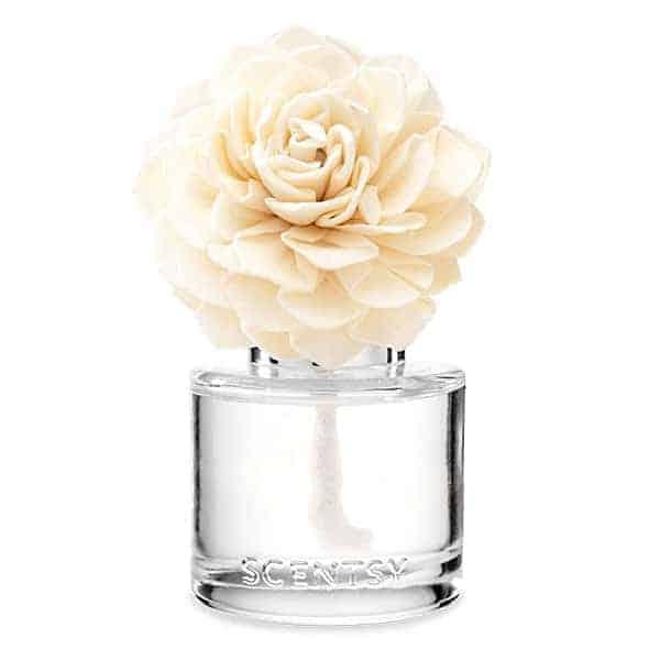 Vanilla Bean Buttercream Scentsy Fragrance Flower