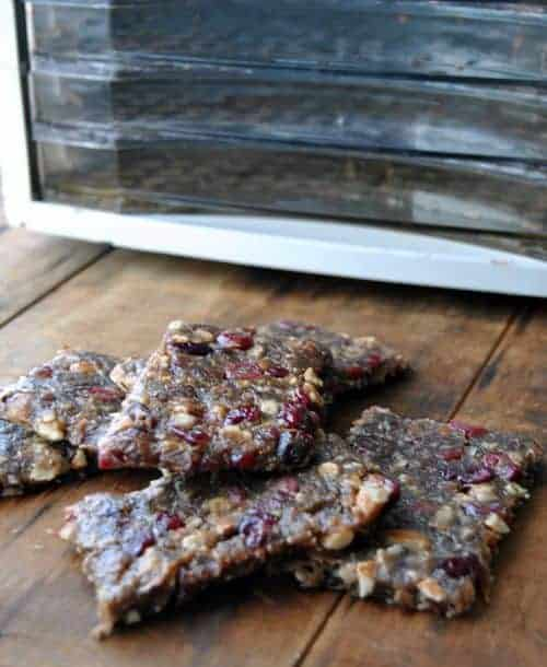 Wild Turkey Pemmican Bars