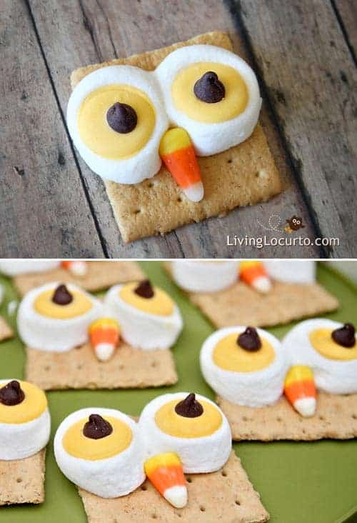 Cute Owl S'mores treats are a HOOT to make! Easy recipe for S'mores that look like owls! Fun food idea for Halloween, Thanksgiving or any birthday party. Recipe by LivingLocurto.com