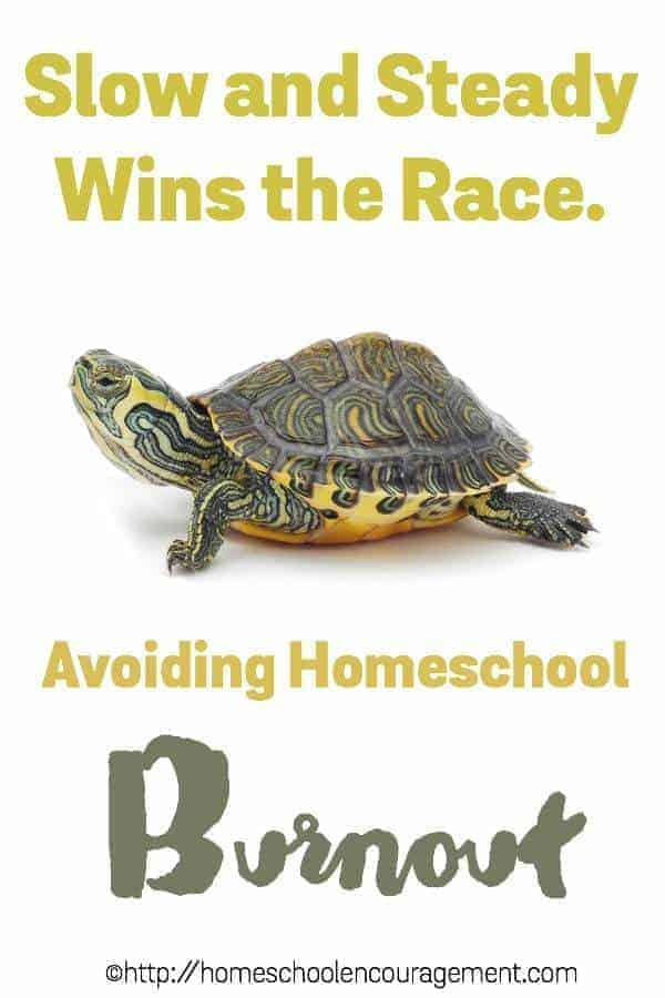 Feeling the stress of homeschool burnout? Take a look at seven ways to avoid burnout and succeed in your homeschool.