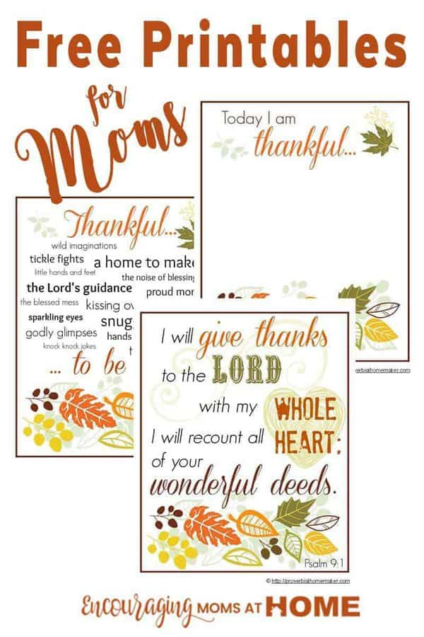 Do you record what you are thankful for? Here is a beautiful (FREE) printable set to help you focus this Thanksgiving season on the things that you are thankful for as a mom.