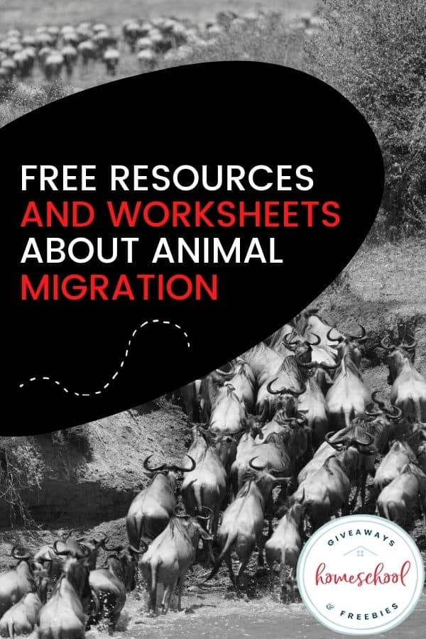 Free Resources and Worksheets About Animal Migration