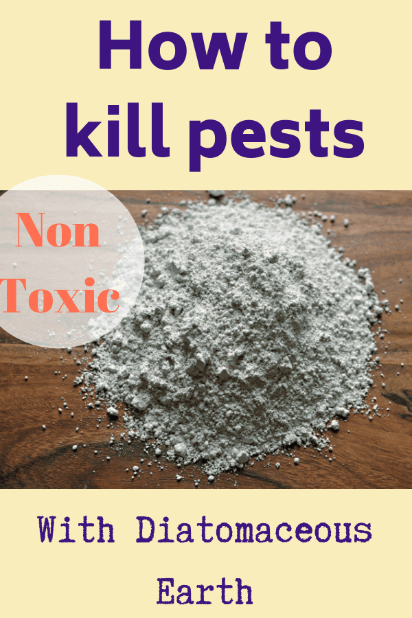 how to kill pests with diatomaceous earth graphic