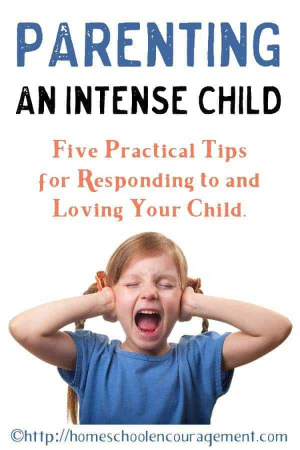 Do you have an intense child? The way their intensity looks different for every child. How we respond to their behavior is our choice. This post has five tips to help with the challenges you might face.