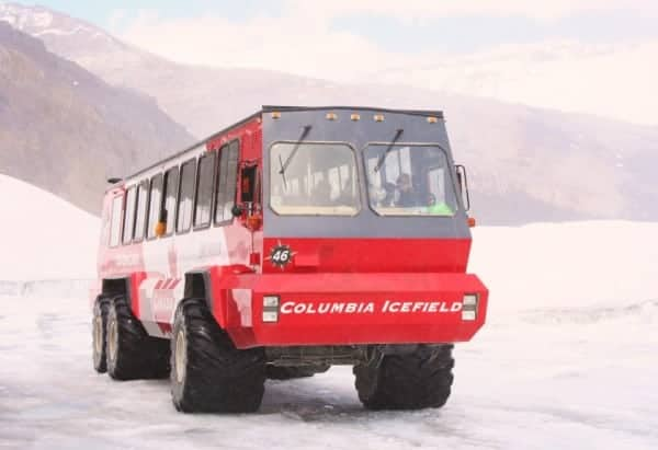 glacier adventure, ice explorer, ice bus, brewster tours ice explorer, columbia icefields adventure, glacier walk, banff with kids, banff with a toddler