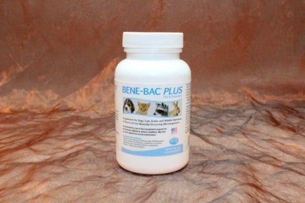 PetAg Benebac Powder 127 Gram 2 600x400 - PetAg, Benebac Powder, 127 Gram
