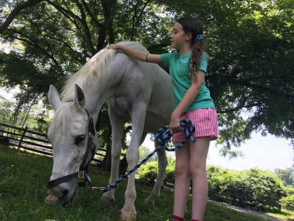 The abandoned mare that recently made national headlines after she was adopted by Jon and Tracey Stewart has died.