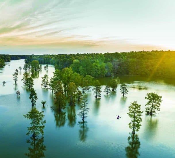 Top Pond State Park