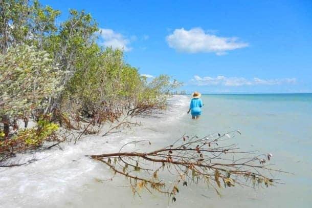 Tigertail Beach A Marco Island