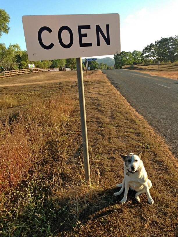 Dog next to sign in Coen Cape York