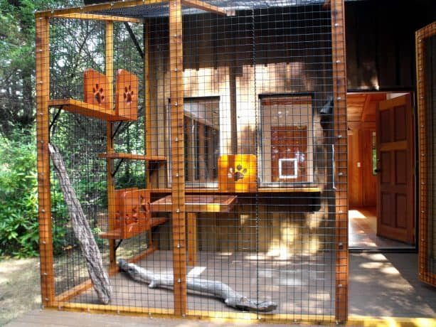 beautiful stained-wood cat enclosure with cute cutout design
